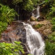 The long exposure image of a beautiful waterfall in the forest — Stock Photo