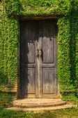 Stare drewniane drzwi w ścianie — Zdjęcie stockowe