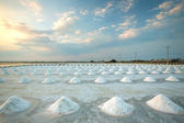 Piles of salt on the surface of the salt lake, Thailand — Stock Photo