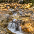 The long exposure image of a beautiful stream in the forest — Stock Photo