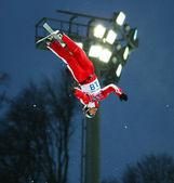 Freestyle Skiing. Men's Aerials Qualification — Stockfoto
