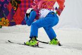 Esquí de estilo libre. final de antenas de los hombres — Foto de Stock