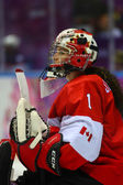 Ice hockey. Women's Gold Medal Game — Stock fotografie