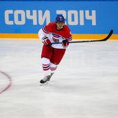 Eishockey. Herren Playoffs Qualifikationen — Stockfoto