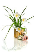 Beautiful white flower in the basket isolated on white — Stock Photo