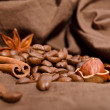 Coffee beans and star anise, cinnamon — Stock Photo