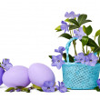 Beautiful blue periwinkle in the basket and green eggs isolated  — Stock Photo #43800103