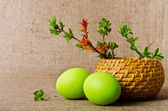 Spring branches in the basket and Easter eggs on burlap backgrou — Stock Photo