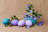 Beautiful blue periwinkle in the basket and easter eggs — Foto Stock