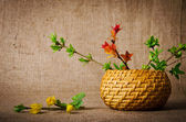 Spring branches in the basket on burlap background — Stock Photo
