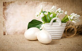 Easter eggs and snowdrops — Stock Photo