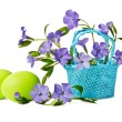 Beautiful blue periwinkles in a basket with green eggs isolated  — Stock Photo #44649917