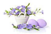 Beautiful blue periwinkle in the basket and  easter eggs isolate — Stock Photo