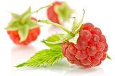 Sweet raspberry isolated on white background — Stock Photo