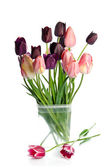 Beautiful bouquet of tulips in transparent vase isolated on whit — Stock Photo