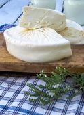 Brined cheese — Stock Photo
