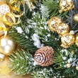 Christmas composition — Stock Photo #13634333