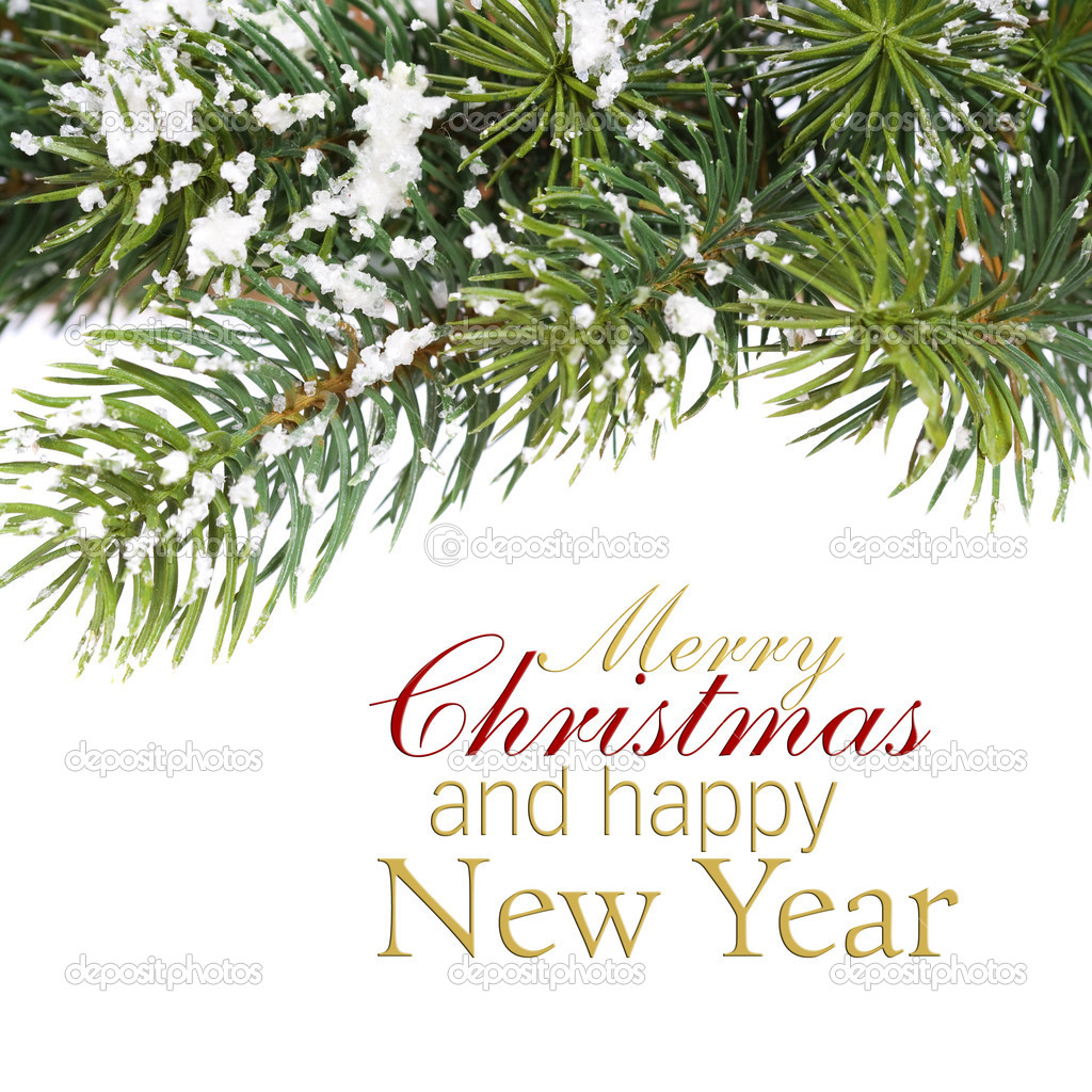 Branch of Christmas tree over white (with sample text)  Stock Photo #13634463