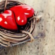 Two red hearts in bird — Stock Photo #15847037