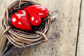 Two red hearts in bird — Stock Photo