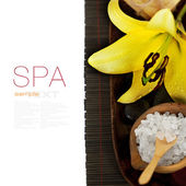Spa composition — Stock Photo
