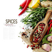 Spices on a wooden board — Stockfoto