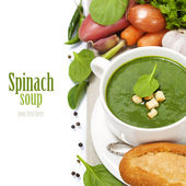 Traditional Spinach soup — Stock Photo