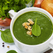 Traditional Spinach soup - Stock Photo