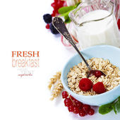 Healthy breakfast with bowl of oat flakes — Stok fotoğraf