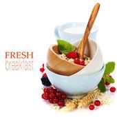 Desayuno saludable con bol de copos de avena — Foto de Stock