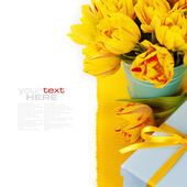 Yellow tulips and gift box — Stock fotografie