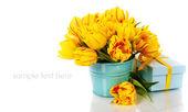 Gele tulpen en doos van de gift — Stockfoto