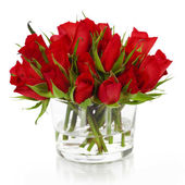 Beautiful red roses — Foto de Stock