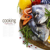 Fruits de mer frais sur glace — Photo