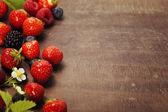 Frische Beeren — Stockfoto
