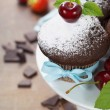 Fresh chocolate muffins — Stockfoto