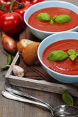Traditional tomato soup — Stock Photo