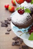 Fresh chocolate muffins — Stock Photo