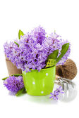 Beautiful Hyacinths and garden tools — Stok fotoğraf