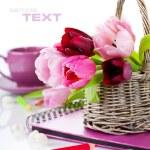 Pink tulips — Stock Photo #2884700