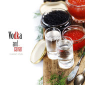 Vodka and caviar — Stock Photo