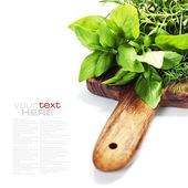 Fresh herbs on wooden chopping board — Stock Photo
