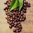Coffee beans — Stock Photo #31361779