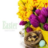 Easter tulips — Stock Photo