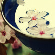 Spring flowers in blue bowl — Stock Photo