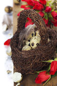 Easter composition with roses — Stock Photo