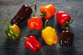 Colored bell peppers — Stock Photo