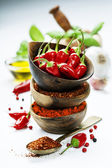 Chili peppers with herbs and spices — Zdjęcie stockowe
