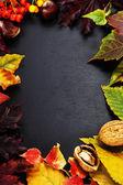Composition automne — Photo