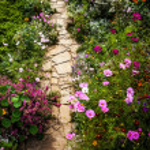 Stone road cross fairy flower park. — Stock Photo #13150330